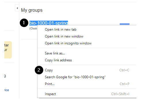screenshot showing the name of a google group