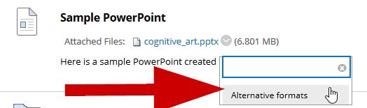 screenshot highlighting the alternative formats option