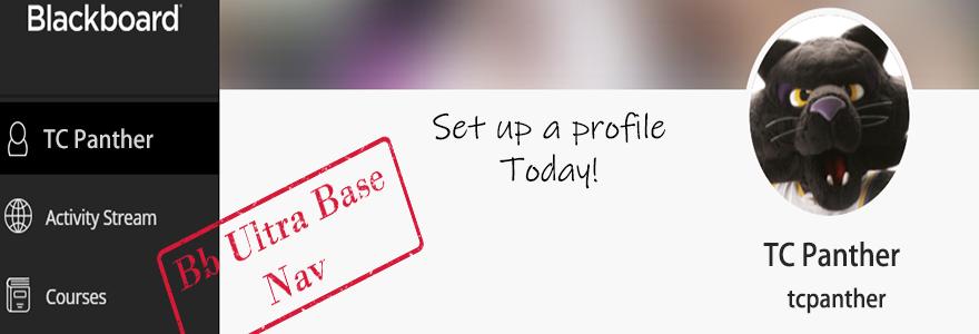 Bb Ultra Base Navigation - Set up a profile today!